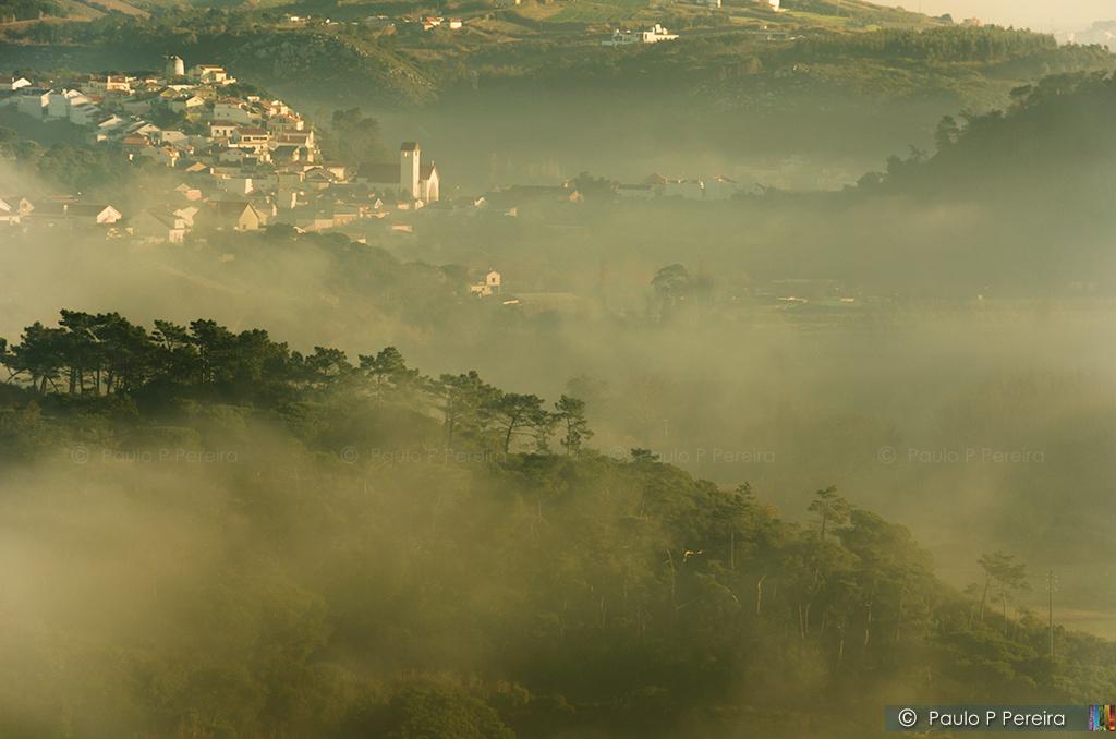 Neblina - Maceira